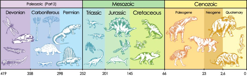 paleozoic mesozoic cenozoic infographic